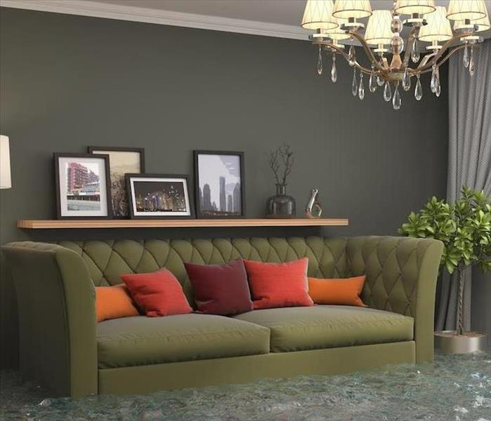 flooded luxury room with ornate green couch