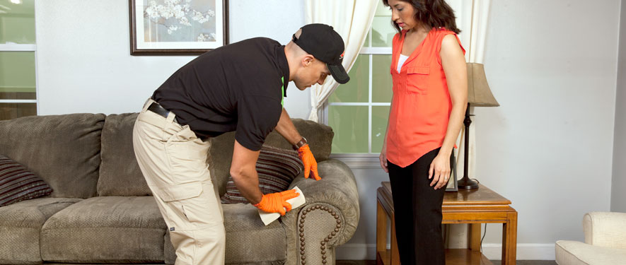 Mount Vernon, WA carpet upholstery cleaning