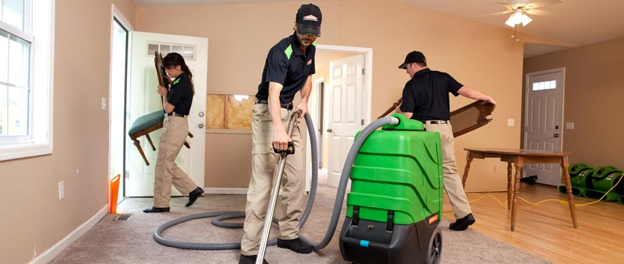 Mount Vernon, WA cleaning services